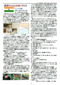 News42_3
